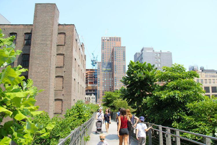 New York49