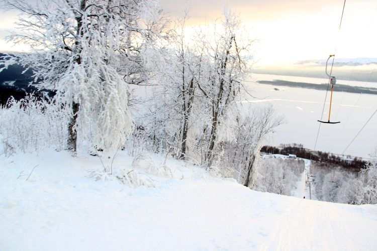 Tärnaby3
