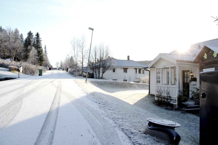 Snö - 1