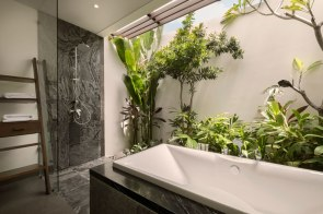 bathtub-deluxe-pool-access